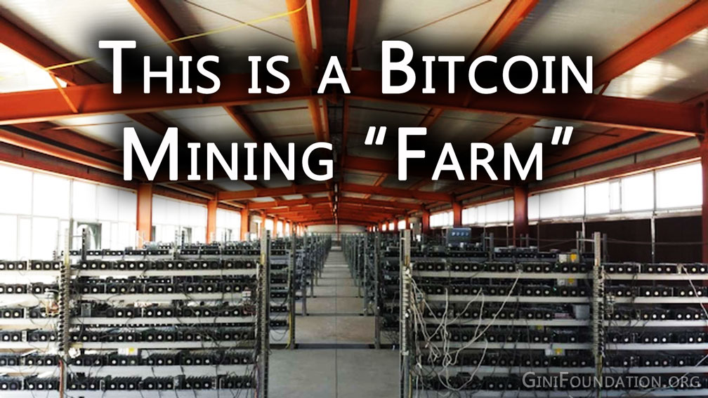bitcoin-mining-farm-ginifoundation.org