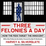 three-felonies-day